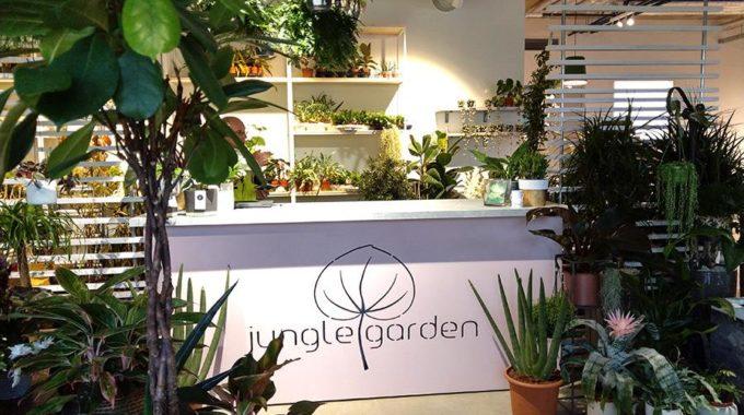 Jungle Garden Taimepood Avatud!